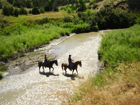 horse rides along the stream