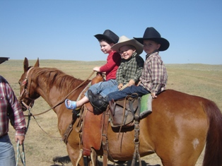 horseback riding and lessons